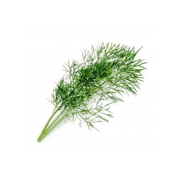 BIO Kopr pro chytré květináče VÉRITABLE® - LINGOT®