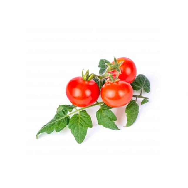 BIO Cherry rajčata pro chytré květináče VÉRITABLE® - LINGOT®